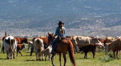Hunewill Ranch Video